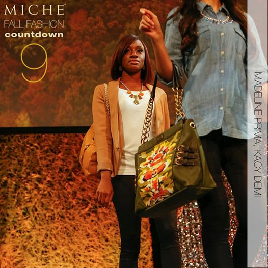 Miche September 2014 Collection Sneak Peak #9 | Shop MyStylePurses.com